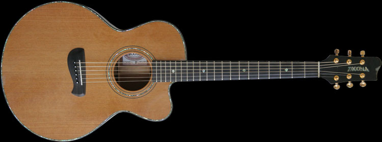 Tacoma ECM38C Limited Edition Amazon Top Guitar, 2001